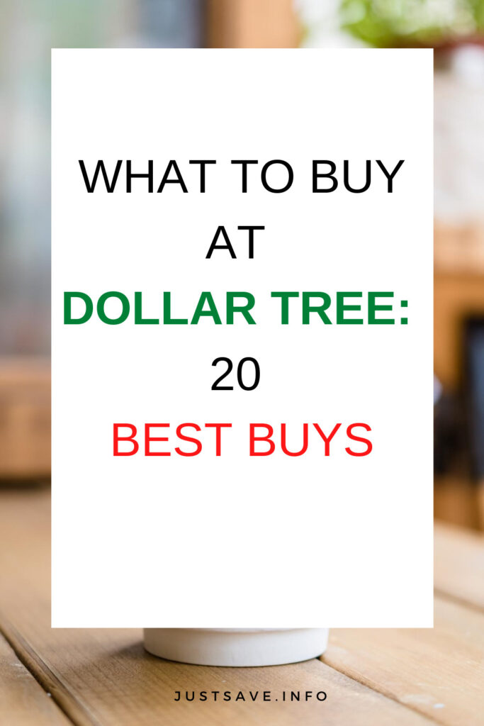 WHAT TO BUY AT DOLLAR TREE: 20 BEST BUYS