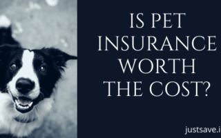 IS PET INSURANCE WORTH THE COST?